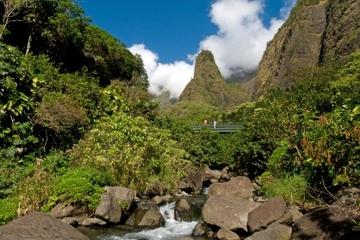 Excursion à Kahukui en bord de mer : plantation tropicale de Maui et...