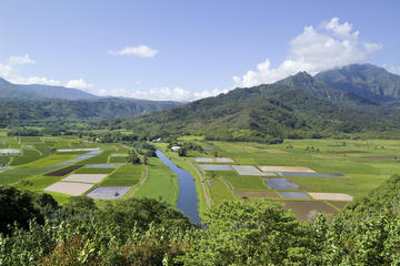 Kustexcursie: Kauai-tour van filmlocaties