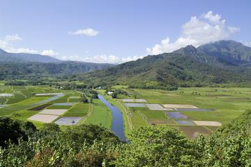 Tour por las instalaciones cinematográficas de Kauai