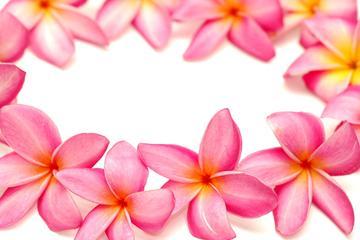 Saluto lei tradizionale a Maui
