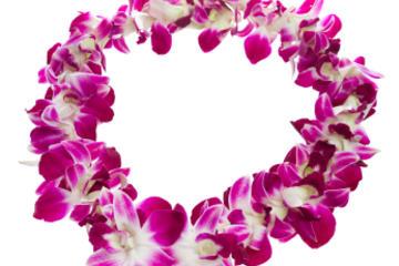 Tradicional guirnalda de bienvenida en Kona