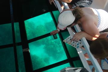 Barco de cruzeiro com fundo de vidro...