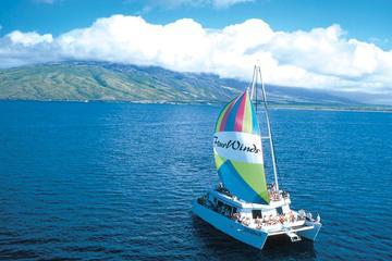 Aventura de buceo de superficie y navegación a Molokini