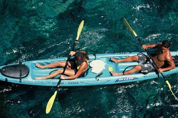 Experiência com snorkel, caiaque e golfinhos na Baía Kealakekua da...