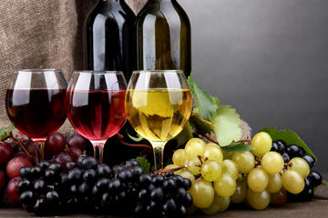 The Bekaa Valey Wineries (full day)