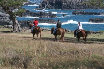 Maui Horseback-Riding Tour with...