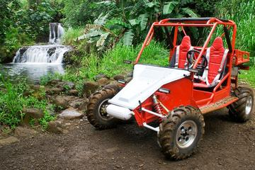 Off-Road Tour of Kauai Waterfalls