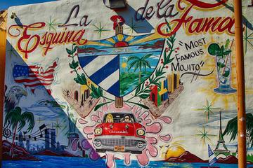 Little Havana Cultural Walking and...
