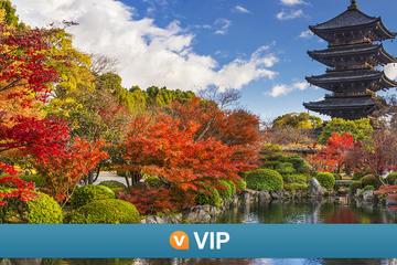 VIP Viator: un accès spécial au temple To-ji avec des moines