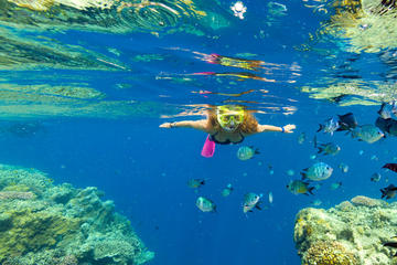 Whitehaven Beach, Hamilton Island and Snorkeling Adventure from...