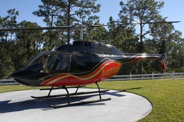 Excursão de helicóptero por Orlando da área de resort do Walt Disney...