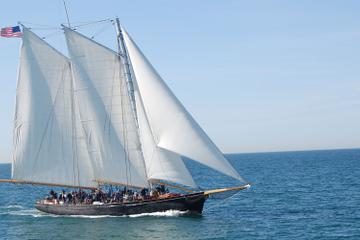 San Diego Bootsfahrt mit Walbeobachtung und Eintritt zum maritimen...