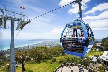 Arthurs Seat Eagle Gondola Ticket