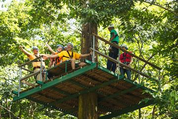 Adrena-Line Zipline Canopy Tour at...
