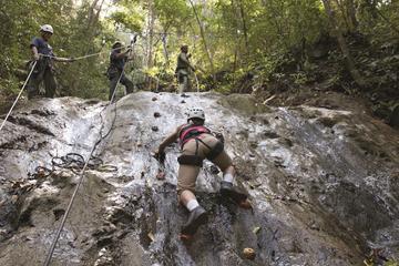 Aventura en la selva tropical de...