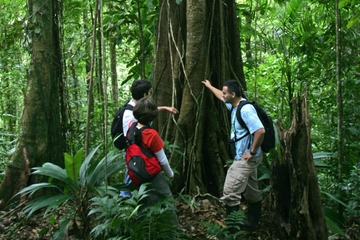 Aventura por el bosque tropical de...