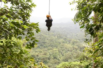 Canopy Zipline Eco-Adventure Tour...