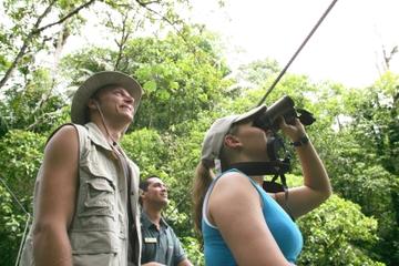 Excursión de observación de pájaros desde San José
