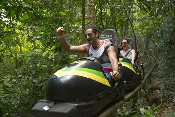 Mystic Mountain Bobsled Tour and Dunns River Falls from Montego Bay