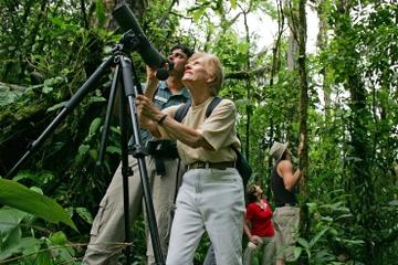 Recorrido de avistamiento de aves desde Jaco