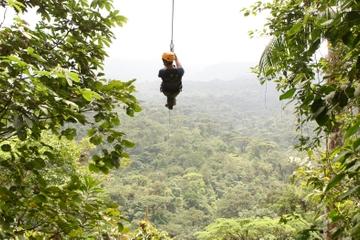 Recorrido de eco-aventura en tirolina por las copas de los árboles...