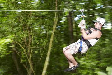 Tour sulla funivia Sky Explorer in Jamaica e giro facoltativo in