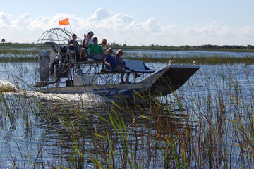 Day Trip Private Tour: Florida Everglades Airboat Ride and Wildlife Adventure near Fort Lauderdale, Florida