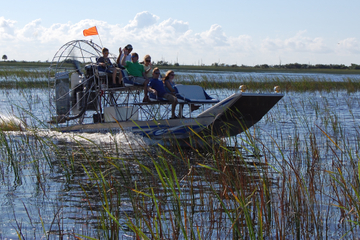 Private Tour: Florida Everglades Luftkissenbootsfahrt und Wildlife ...