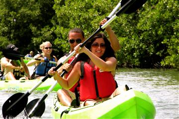 St Thomas Mangrove Lagoon Kayak and...