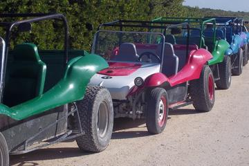 Dune Buggy Tour at Punta Sur National Park