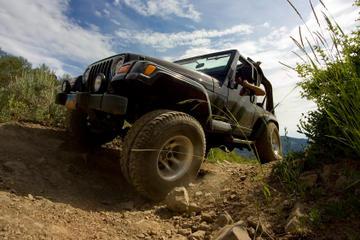 Excursión en tierra en Cozumel: aventura en jeep y buceo de superficie