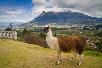 Escapada de un día a Otavalo desde Quito: Mercado de artesanía y el...