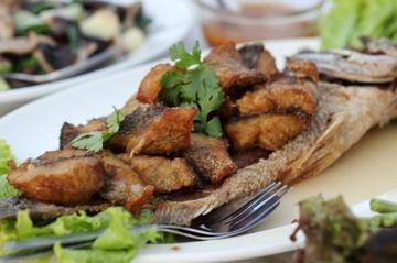 Excursión gastronómica y por los mercados para grupos pequeños en La...