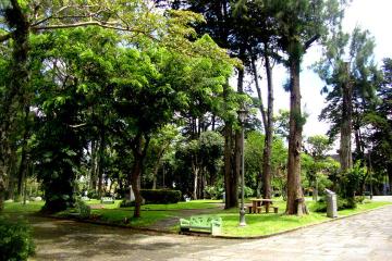 Recorrido a pie por San José: Comida, historia y arquitectura