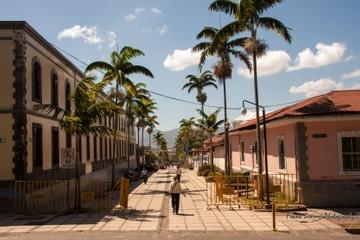 Recorrido a pie por San José, incluido el Mercado Central y el...