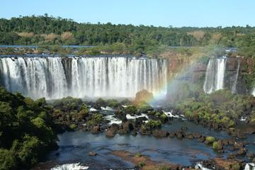 Total Iguassu Falls Small Group Walking Tour with a Local Guide