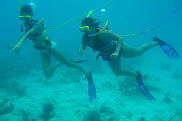 Excursión por la costa St Thomas: Aventura de Snuba en Coral World...