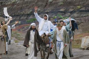 Dimanche des Rameaux à Jérusalem : messe à Bethphagé et procession...