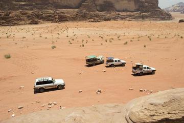 Excursión de safari por el desierto y el mar Muerto desde Jerusalén