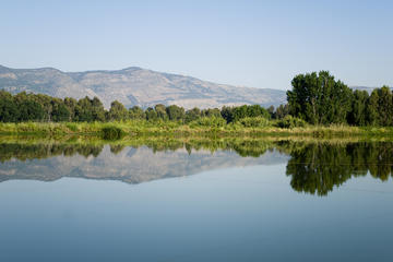 Excursión de un día a Altos del Golán...