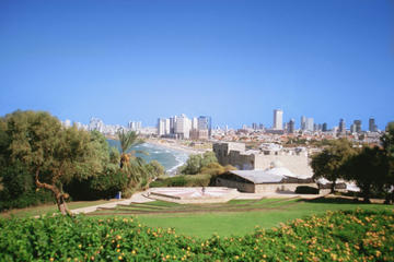 Private Tour: Jaffa, Tel Aviv, Nalagaat Center