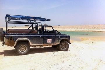 Safari dans le désert et excursion d'une journée au bord de la mer...