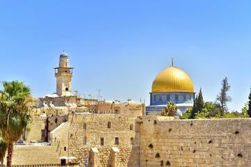 Tour de día completo al Viejo Jerusalén