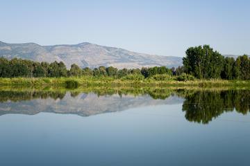 Viagem diurna às Colinas de Golã...