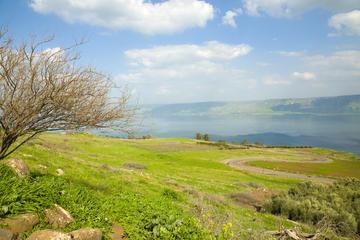 Visite des sites sacrés du patrimoine juif au départ de Jérusalem...