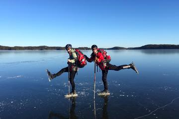 A Day On the Ice in Stockholm
