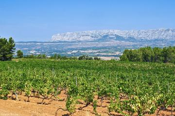 Day Tour Aix en Provence & Wine in Côtes de Provence Sainte-Victoire