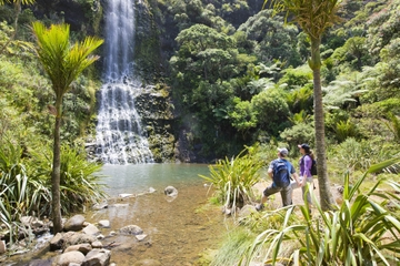 Caminhada guiada às Cordilheiras Waitakere saindo de Auckland