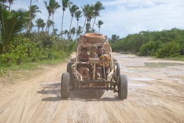 Día completo en buggy por las dunas...