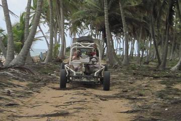 Ganztägige Dünen-Buggy-Abenteuertour in Punta Cana zur Lemon Lagoon...